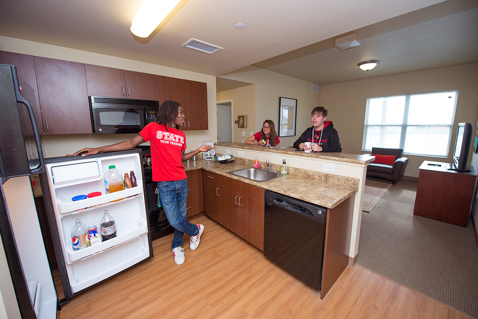 Picture of a kitchen in this residence hall
