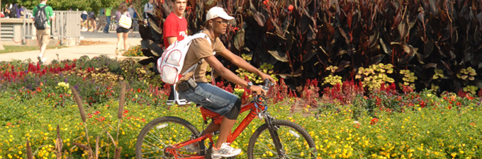 biker on campus during the summer